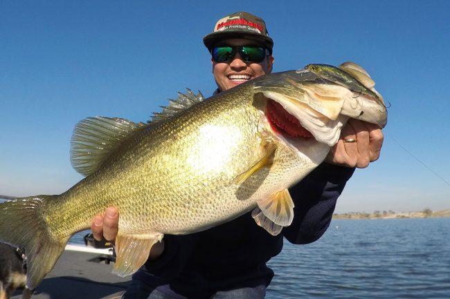 Zaldain Lake Fork Ito Shiner