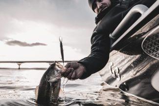 Pre Spawn Jerkbait Fishing