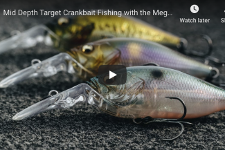 Fishing with the Megabass Deep-X 100 LBO