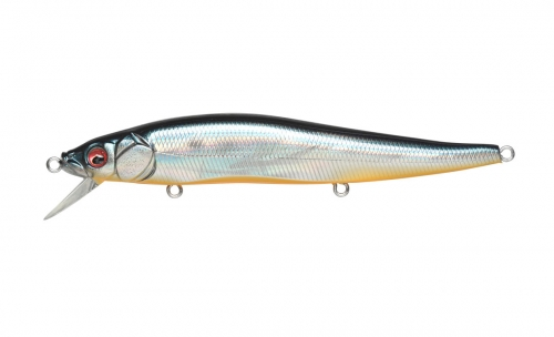 GG DEADLY BLACK SHAD IL