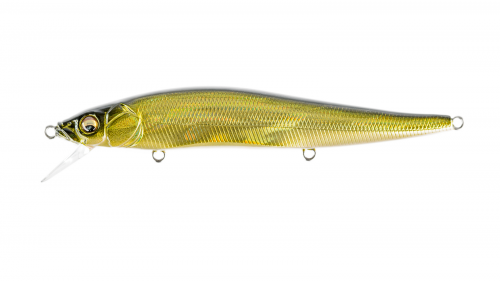 GG MOSSBACK GOLDEN SHAD