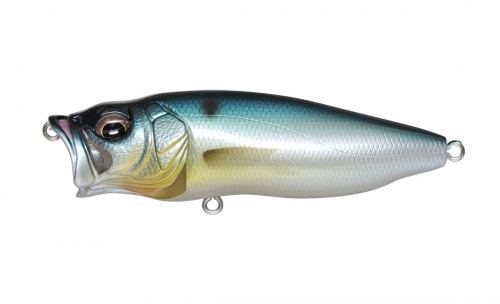 PM THREADFIN SHAD